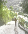 Residents of Nanital wake up to a thick blanket of snow